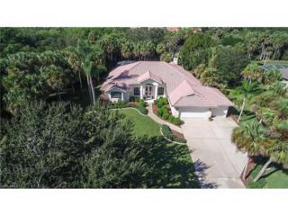 12711 Treeline Ct, North Fort Myers, FL 33903 (MLS #216071106) :: The New Home Spot, Inc.