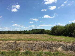 5933 County Road 78, Labelle, FL 33935 (MLS #216071495) :: The New Home Spot, Inc.