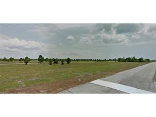 14541 Blue Marlin Rd, Placida, FL 33946 (MLS #216072862) :: The New Home Spot, Inc.