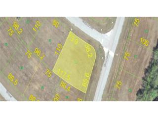 13019 Chilipepper Dr, Placida, FL 33946 (MLS #216072871) :: The New Home Spot, Inc.