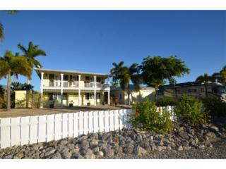 2248 Lemon St, St. James City, FL 33956 (MLS #216073320) :: The New Home Spot, Inc.