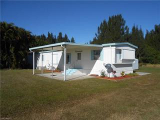 5086 Curlew Dr, St. James City, FL 33956 (MLS #216073389) :: The New Home Spot, Inc.