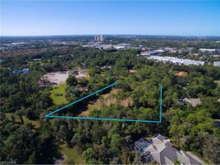 13577 Brynwood Ln, Fort Myers, FL 33912 (MLS #216073664) :: The New Home Spot, Inc.