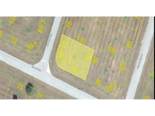 14494 Opaleye Way, Placida, FL 33946 (MLS #216073693) :: The New Home Spot, Inc.