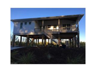 3670 Crestwell Ct, St. James City, FL 33956 (MLS #216074765) :: The New Home Spot, Inc.