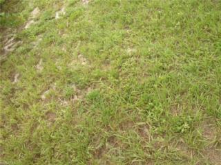 27281 Puno Dr, Punta Gorda, FL 33983 (MLS #216074781) :: The New Home Spot, Inc.