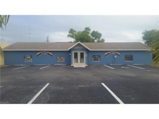 4421 SE 15th Ave, Cape Coral, FL 33904 (MLS #216077507) :: The New Home Spot, Inc.