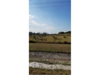 5310 Fort Denaud Rd, FORT DENAUD, FL 33935 (MLS #216078104) :: The New Home Spot, Inc.