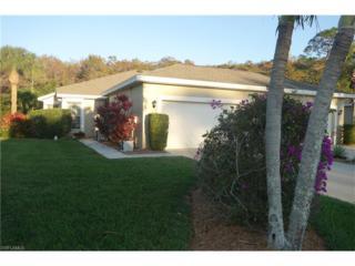 23256 Grassy Pine Dr, Estero, FL 33928 (MLS #216078660) :: The New Home Spot, Inc.