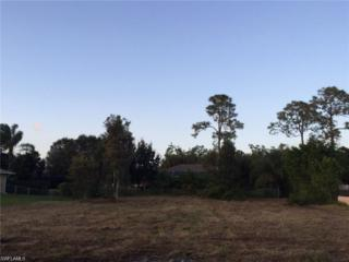 6733 Canton St, Fort Myers, FL 33966 (MLS #216079065) :: The New Home Spot, Inc.