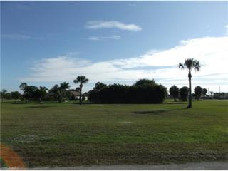 7354 N Seagrape Rd, Punta Gorda, FL 33955 (MLS #216079510) :: The New Home Spot, Inc.