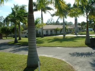 25371 Corzine Rd, Bonita Springs, FL 34135 (MLS #216079853) :: The New Home Spot, Inc.