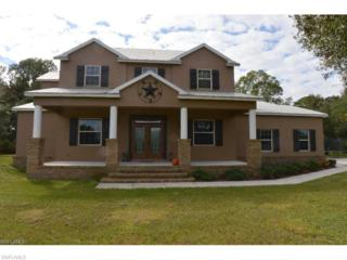 5530 Fort Denaud Rd, Labelle, FL 33935 (MLS #216080249) :: The New Home Spot, Inc.