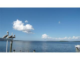 4256 Pine Island Rd NW, Matlacha, FL 33993 (MLS #216080545) :: The New Home Spot, Inc.