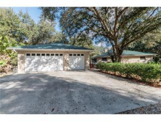 5950 Hidden Hammock Dr, Labelle, FL 33935 (MLS #216080746) :: The New Home Spot, Inc.