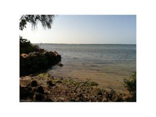 3157 Vacation Ln, St. James City, FL 33956 (MLS #217000039) :: The New Home Spot, Inc.