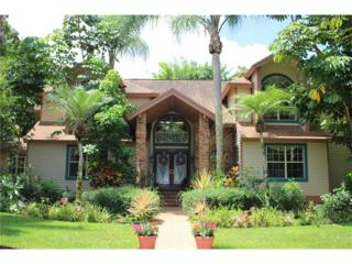 1320 Alcazar Ave, Fort Myers, FL 33901 (MLS #217000134) :: The New Home Spot, Inc.