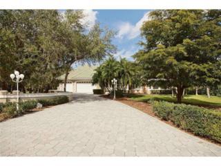 12621 Treeline Ct, North Fort Myers, FL 33903 (MLS #217000178) :: The New Home Spot, Inc.