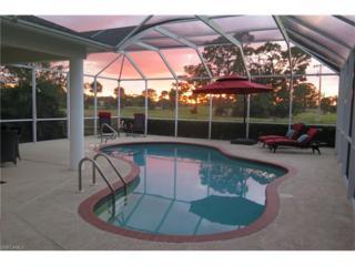 608 Mirror Lakes Falls Ct, Lehigh Acres, FL 33974 (MLS #217000189) :: The New Home Spot, Inc.