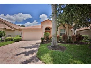 7523 Sika Deer Way, Fort Myers, FL 33966 (MLS #217000249) :: The New Home Spot, Inc.