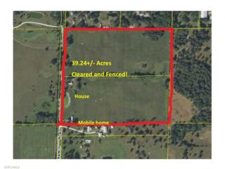 325 S Willis Ranch Rd, Felda, FL 33930 (MLS #217000276) :: The New Home Spot, Inc.