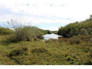 12620 E State Road 78, Moore Haven, FL 33471 (MLS #217000384) :: The New Home Spot, Inc.