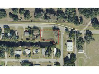 12575 Williams Rd, Moore Haven, FL 33935 (MLS #217000599) :: The New Home Spot, Inc.