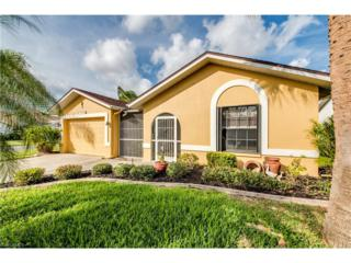 17878 Acacia Dr, North Fort Myers, FL 33917 (MLS #217001660) :: The New Home Spot, Inc.