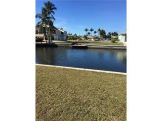 2920 Bracci Dr, St. James City, FL 33956 (MLS #217001859) :: The New Home Spot, Inc.
