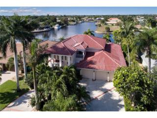 3306 SE 22nd Ave, Cape Coral, FL 33904 (MLS #217001916) :: The New Home Spot, Inc.
