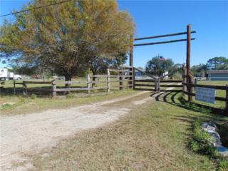 5681 Pangola Rd, Fort Myers, FL 33905 (MLS #217002001) :: The New Home Spot, Inc.