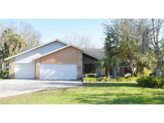 311 Caloosa Estates Dr, Labelle, FL 33935 (MLS #217002806) :: The New Home Spot, Inc.