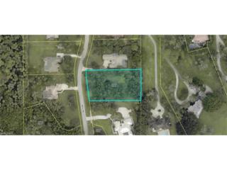 12710 Treeline Ct, North Fort Myers, FL 33903 (MLS #217002971) :: The New Home Spot, Inc.