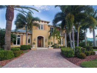 6602 Griffin Blvd, Fort Myers, FL 33908 (MLS #217003330) :: The New Home Spot, Inc.