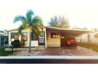95 Sunrise Ave, North Fort Myers, FL 33903 (MLS #217003379) :: The New Home Spot, Inc.