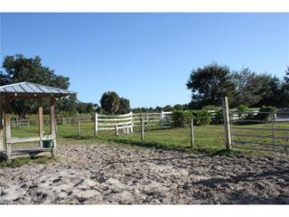 12701 Washburn Dr, Fort Myers, FL 33905 (MLS #217003608) :: The New Home Spot, Inc.