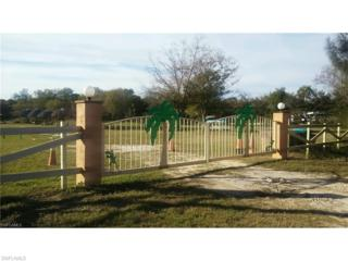 20901 Bradley Rd, North Fort Myers, FL 33917 (MLS #217004218) :: The New Home Spot, Inc.