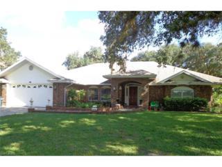 1490 Riverbend Dr, Labelle, FL 33935 (MLS #217005041) :: The New Home Spot, Inc.