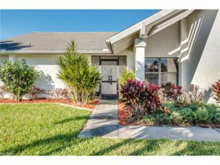 3716 SE 17th Ave, Cape Coral, FL 33904 (MLS #217005109) :: The New Home Spot, Inc.