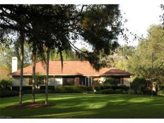 17461 Frank Rd, Alva, FL 33920 (MLS #217005180) :: The New Home Spot, Inc.