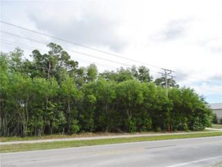 8690 Stringfellow Rd, St. James City, FL 33956 (MLS #217005401) :: The New Home Spot, Inc.
