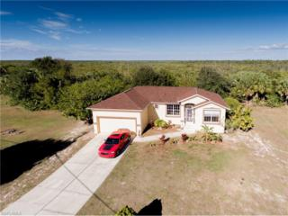 24362 Yacht Club Blvd, Punta Gorda, FL 33955 (#217005610) :: Homes and Land Brokers, Inc