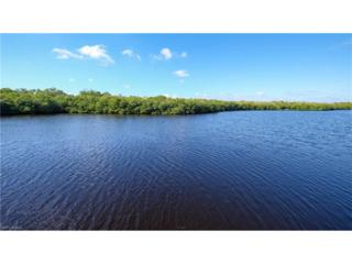 14201 Bay Dr, Fort Myers, FL 33919 (MLS #217005772) :: The New Home Spot, Inc.