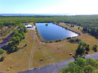 3511 Heron Landing Cir, Other, FL 33956 (MLS #217005997) :: The New Home Spot, Inc.
