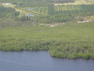 6170 Masters Landing Dr, St. James City, FL 33956 (MLS #217006335) :: The New Home Spot, Inc.