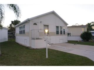 10748 Yellow Rail Cir, Estero, FL 33928 (MLS #217006469) :: The New Home Spot, Inc.
