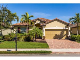 20217 Black Tree Ln, Estero, FL 33928 (MLS #217007232) :: The New Home Spot, Inc.