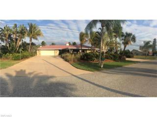 3413 SE 22nd Pl, Cape Coral, FL 33904 (MLS #217007979) :: The New Home Spot, Inc.