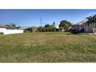 2211 SE 18th Pl, Cape Coral, FL 33990 (MLS #217008094) :: The New Home Spot, Inc.