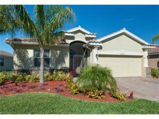 2529 Laurentina Ln, Cape Coral, FL 33909 (MLS #217008320) :: The New Home Spot, Inc.